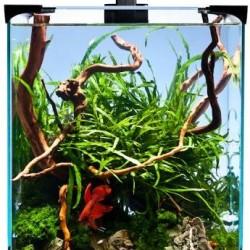 Akvárium szett- Diversa NanoLED -10 L